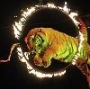 Цирки в Самаре